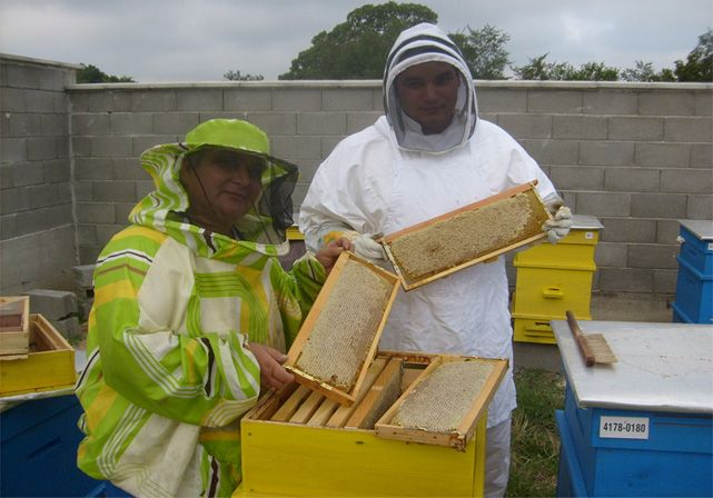 Our Dedicated Beekeepers
